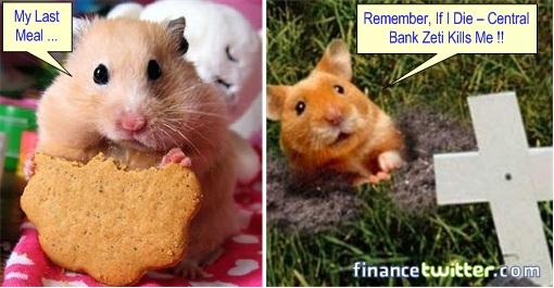 Genneva Gold - Hamster Dying