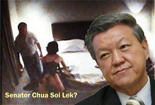 13 General Election - Senator Chua Soi Lek