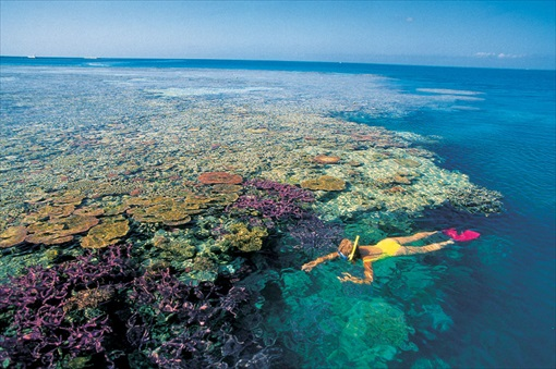 Top-20 Islands In The World - Great Barrier Reef Island