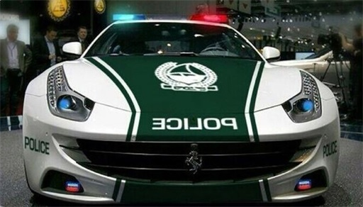 Exotic Dubai Police Force's Fleet of Supercars - Ferrari FF 3