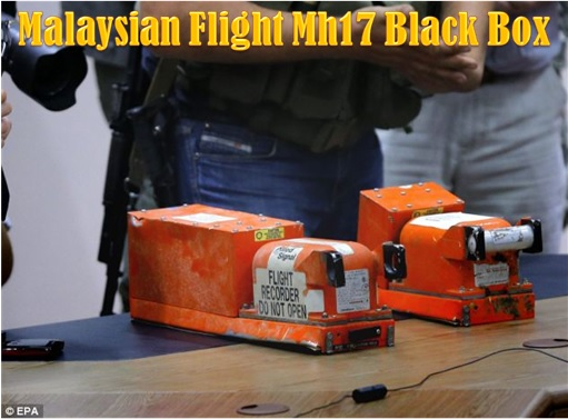 Malaysian Flight MH17 Shot Down - Black Box