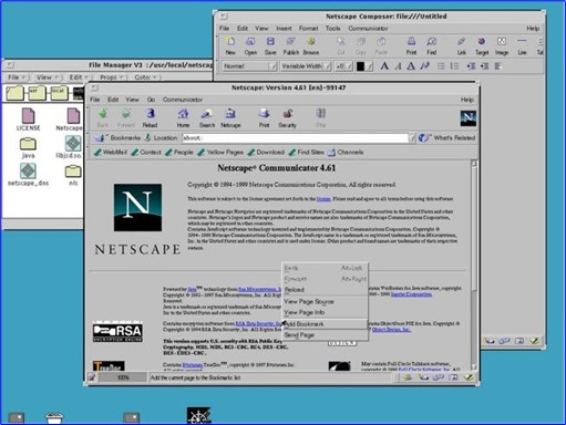 1994 - Netscape Was Browser Of Choice