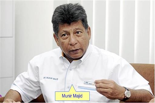 Malaysia Airlines Bailout - Munir Majid