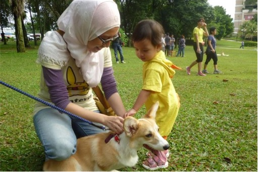 Malaysia I Want To Touch A Dog Event - Mother and Son Touching A Dog