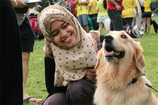 Malaysia I Want To Touch A Dog Event - Muslim Girl Happily Touching A Dog