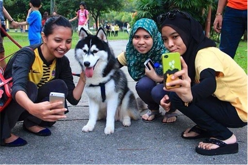 Malaysia I Want To Touch A Dog Event - Selfieing - 1