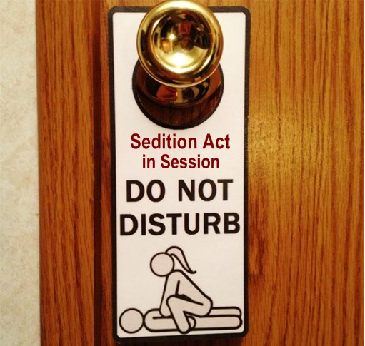 Do Not Disturb, Sedition Act in Session - Sex in Session