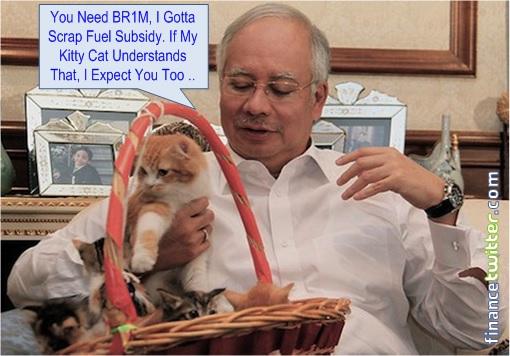 Najib Razak Scraps Petrol Subsidy - Play with Cat