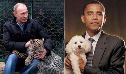 Putin Plays With Cheetah vs Obama Plays Poodle