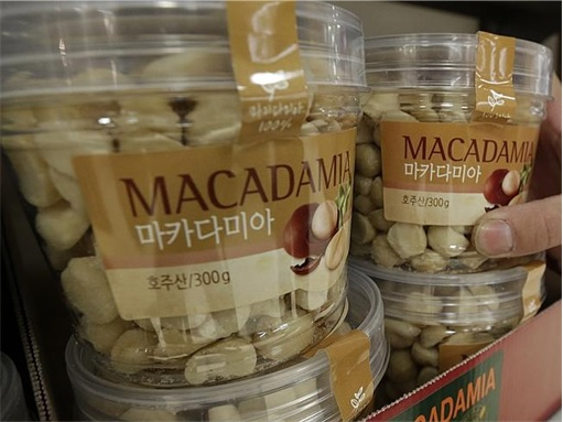 Macadamia Nuts in bottle