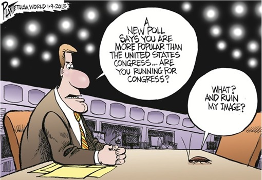 Cockroaches Have Personalities - Running for Congress Cartoon