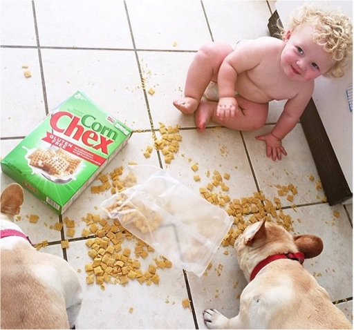 Kids Are The Worst - Sharing Flakes on Floor with Dogs