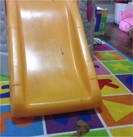 Kids Are The Worst - Slide Shit