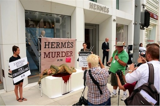 Protest at Hermes Birkin - Animal Cruelty