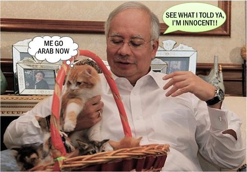MACC Declares Najib Billion Dollars A Donation - Talking to Cat