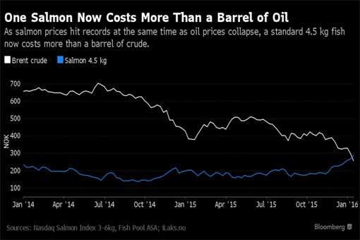 One Salmon Worth More Than One Barrel of Oil - Chart
