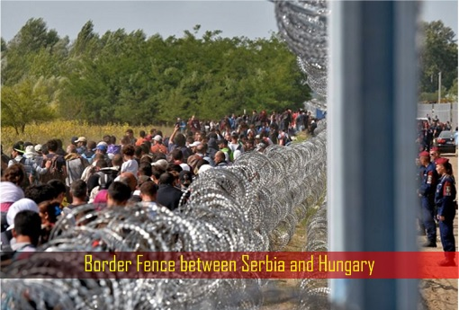 Border Fence between Serbia and Hungary
