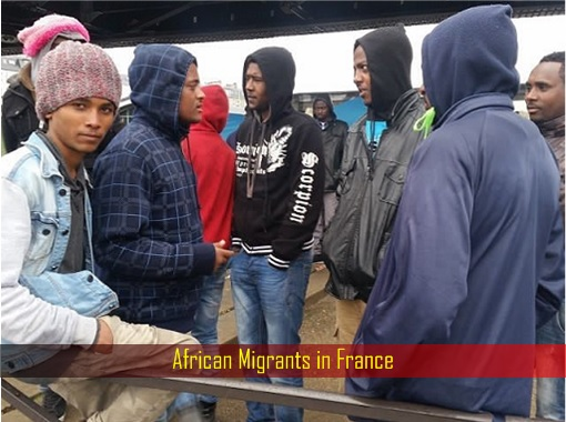 African Migrants in France