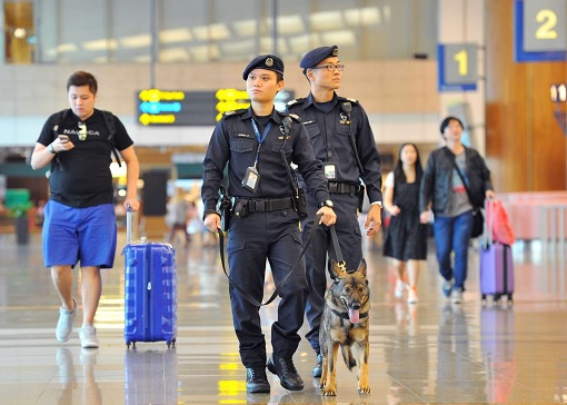 Airport Security - Armed Guards and Police Dog