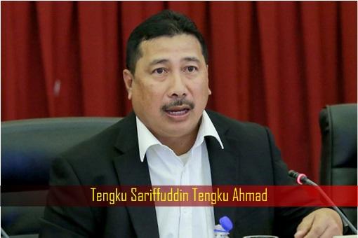 Tengku Sariffuddin Tengku Ahmad