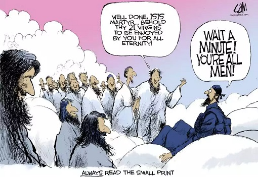 Islam and 72 Virgins - Cartoon
