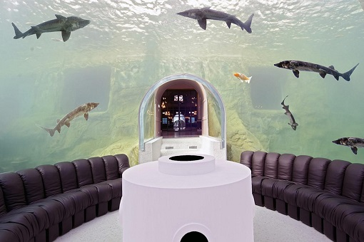Chateau Louis XIV France - Underwater Room