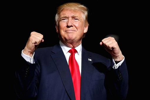 Donald Trump Winning Gesture - Punch Up
