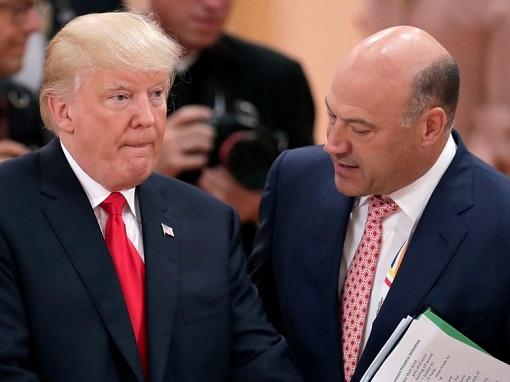 Gary Cohn Advising Donald Trump