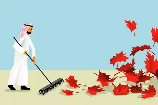 Canada vs Saudi Arabia - Feud - Sweeping Leaves