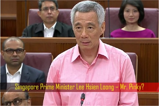 Singapore Prime Minister Lee Hsien Loong – Mr. Pinky