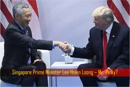 Singapore Prime Minister Lee Hsien Loong with US President Donald Trump – Mr. Pinky
