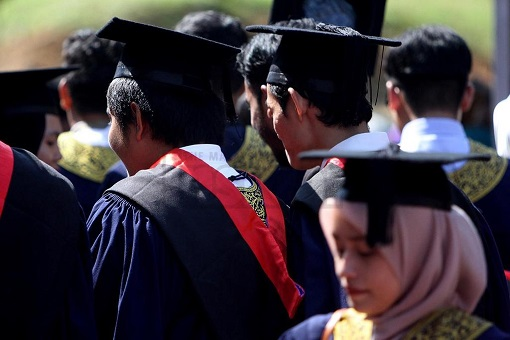 University Graduates - Malay Students