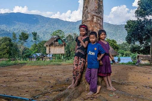 Kelantan Indiscriminate Illegal Logging - Indigenous People