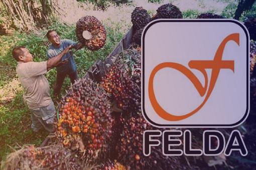 Palm Oil Felda Malaysia