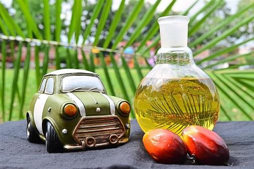 Palm Oil Bio-Diesel