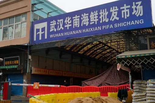 Coronavirus - Wuhan Huanan Seafood Wholesale Market