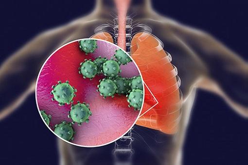 Coronavirus - Respiratory System
