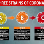 3 Coronavirus Variants Discovered - Surprisingly,