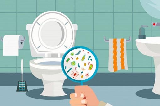 Toilet - Germs, Bacteria, Virus