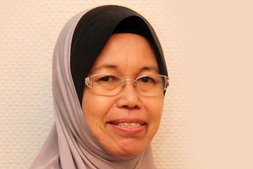 Sabah Warisan-Pakatan Harapan Government - 13 Traitors - Hamisa Samat