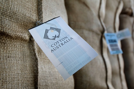 Cotton Australia Label