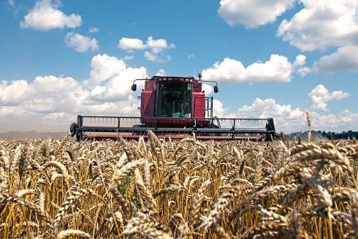 Australia Wheat Industry