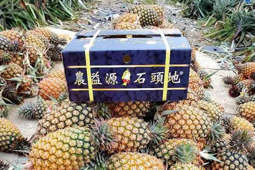 China Suddenly Banned Taiwanese Pineapples - And Taiwan Says The Political Retaliation Is Unfair & Unfriendly