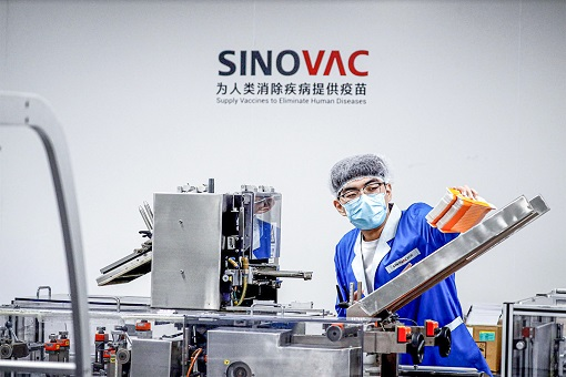 Coronavirus - Sinovac Covid-19 Vaccine - Processing