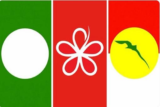 PAS-Bersatu-UMNO - Symbols
