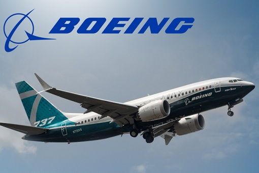 Boeing 737 MAX - In The Sky
